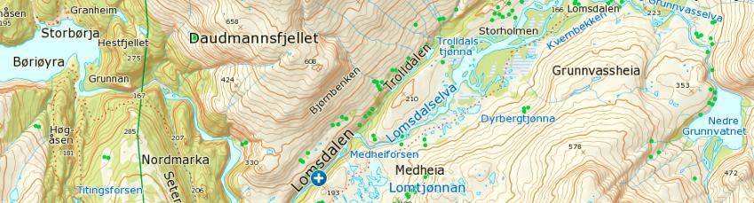 Nedre Grunnvatnet og Børiøyra kart.PNG