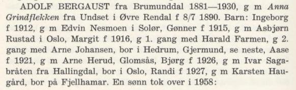 Sør-Odal bygdebok. 1-5 1  Gards- og slektshistorie for Strøm sokn.jpeg